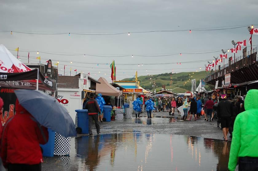 Fans, under umbrellas, ready for the rain.